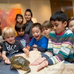 Jabba the African Bull Frog shows the children that not only the cutie pretty animals can be awesome